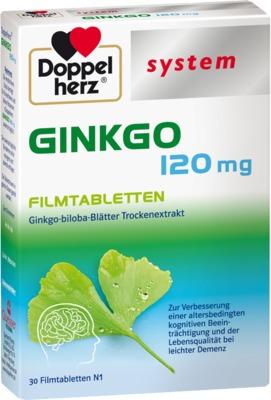 Queisser Pharma GmbH & Co. KG Doppelherz GINKGO 120mg 10963231