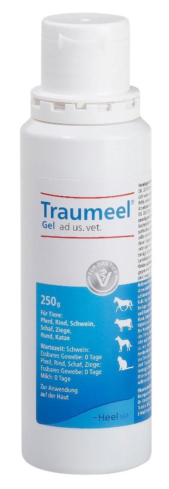 Biologische Heilmittel Heel GmbH Traumeel Gel ad us. vet. 11013454