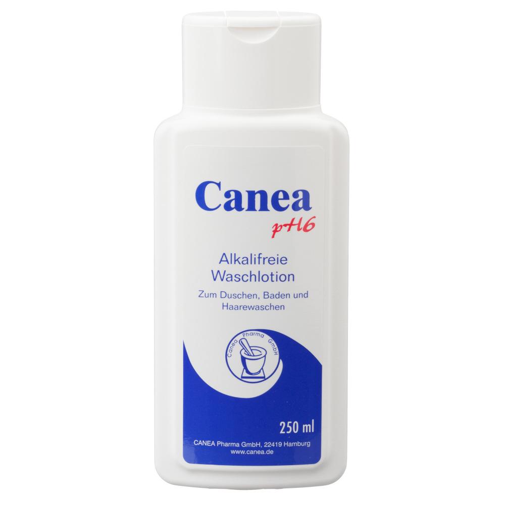 Pharma Peter GmbH CANEA pH6 alkalifreie Waschlotion 00494427