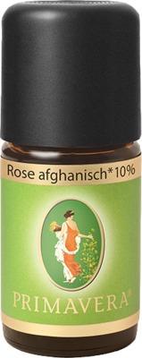 Primavera Life GmbH ROSE AFGHANISCH Bio 10% ätherisches Öl 10245688