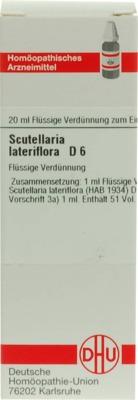 SCUTELLARIA LATERIFLORA D 6 Dilution