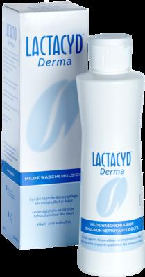LACTACYD Derma Waschsyndet