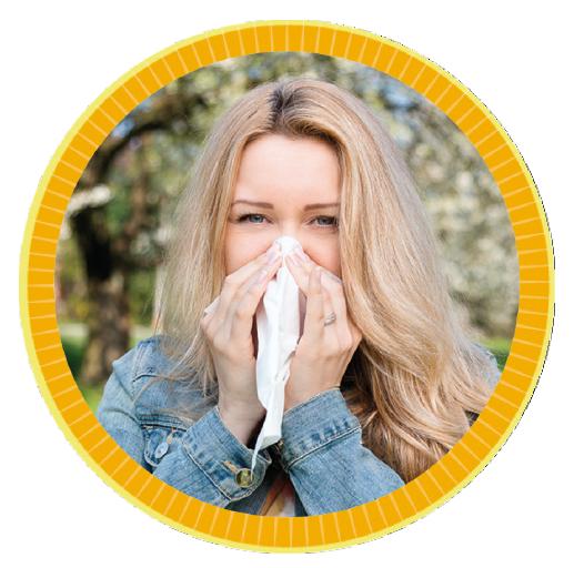 Livocab bei Allergie