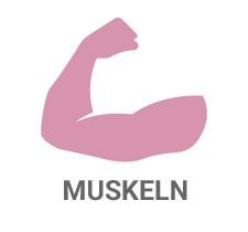 Boma Lecithin Muskeln