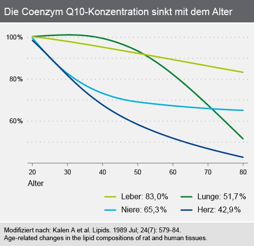 Die Coenzym Q10-Konzentration sinkt im Alter